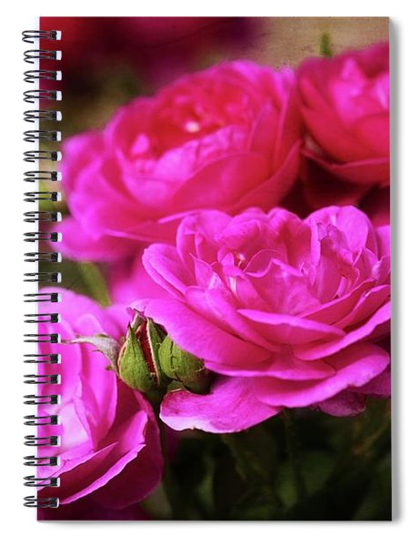 Your Precious Love Spiral Notebook