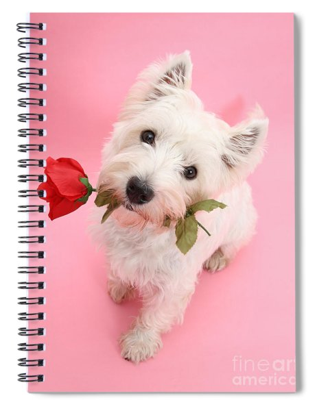 Your Valentine Every Day Spiral Notebook