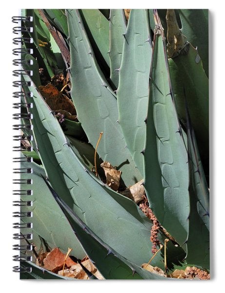 Yucca Leaves Spiral Notebook
