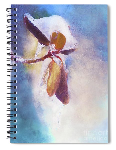 Winter Abstract - Snow And Ice On Rhododendron Leaves Spiral Notebook