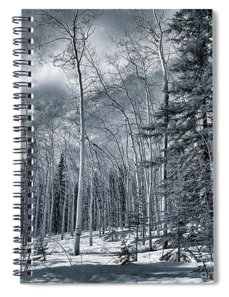 Land Shapes 35 Spiral Notebook by Priska Wettstein