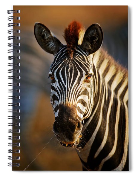 Zebra Close-up Portrait Spiral Notebook