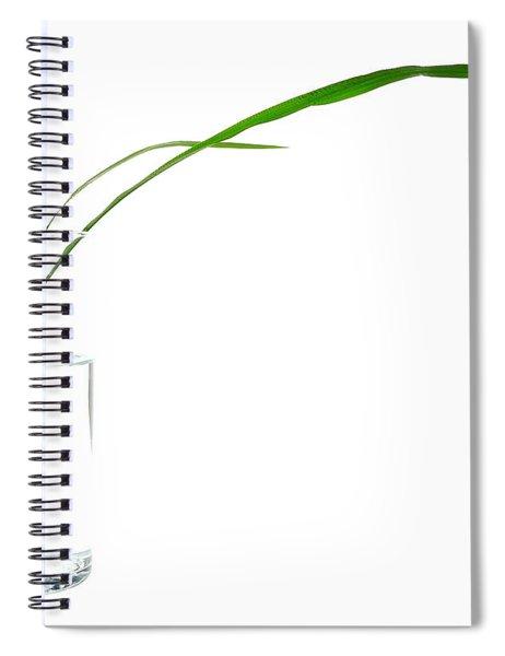 Zen Grass Spiral Notebook