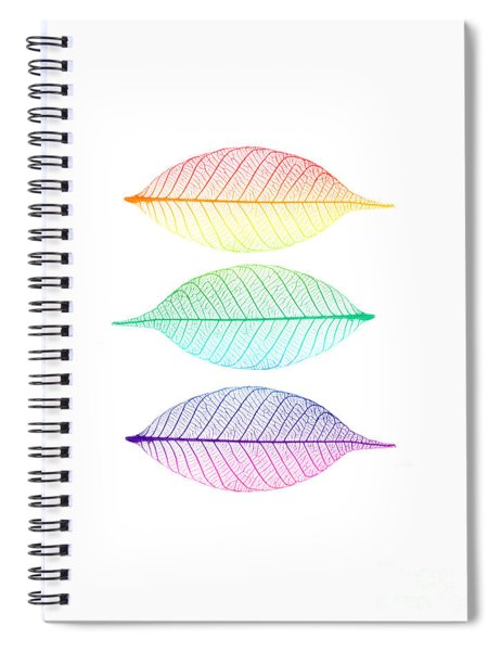 Zen Leaves Spiral Notebook