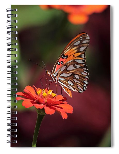 Zinnia With Butterfly 2668 Spiral Notebook