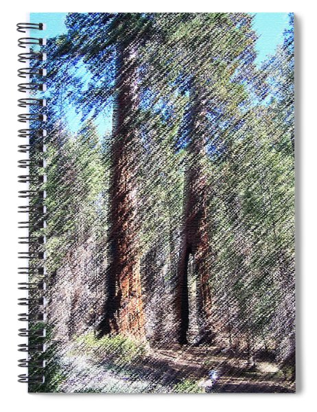 010219 Red Woods California Spiral Notebook