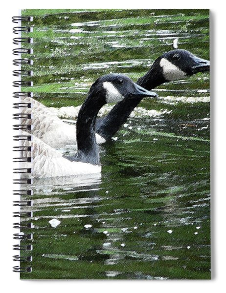 031619 Geese City Park New Orleans Spiral Notebook
