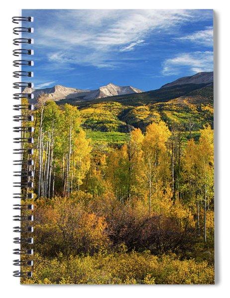 Aspens Of Kebler Pass Spiral Notebook