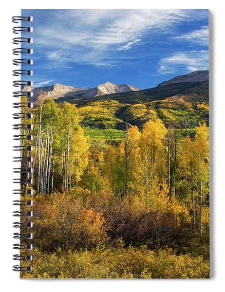 Spiral Notebook featuring the photograph Aspens Of Kebler Pass by John De Bord