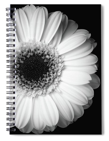 Spiral Notebook featuring the photograph Black And White Flower by Mirko Chessari