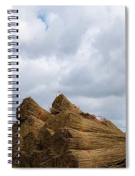 Spiral Notebook featuring the photograph Bound Reeds  by Anjo Ten Kate