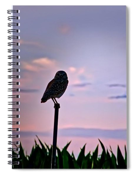 Burrowing Owl On A Stick Spiral Notebook