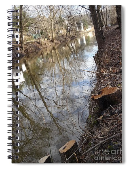 Canal Stumps-002 Spiral Notebook