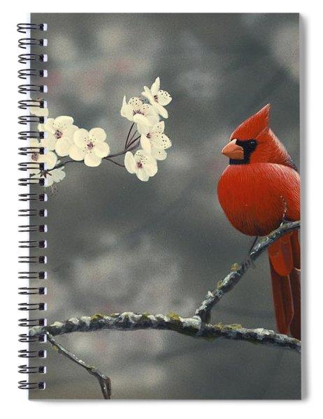 Cardinal And Blossoms Spiral Notebook