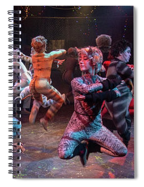 Cats In The Air Spiral Notebook