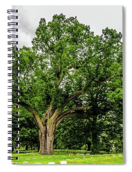 Centennial Oak, Salem Oak Tree Spiral Notebook by Louis Dallara