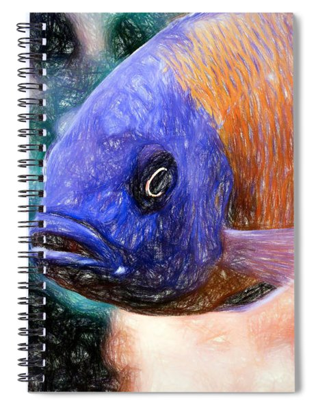 Colored Pencil Red Fin Borleyi Cichlid Spiral Notebook