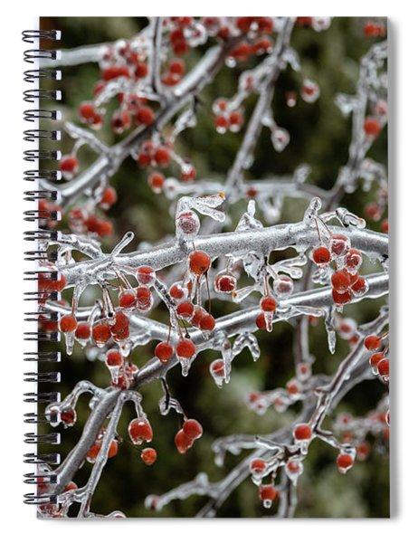 Crab Apple Tree Spiral Notebook