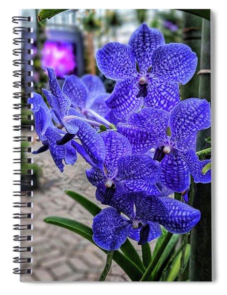 Deep Purple Orchid Spiral Notebook