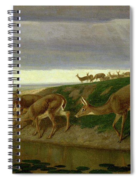 Deer On The Prairie Spiral Notebook