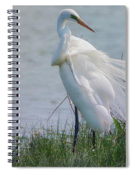 Egret 8 Spiral Notebook