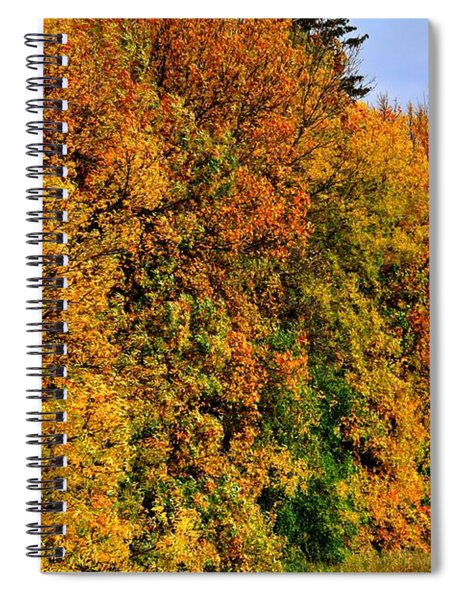 Fall Row Spiral Notebook