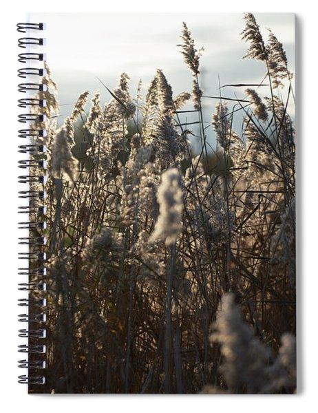 Fine Art Nature Spiral Notebook