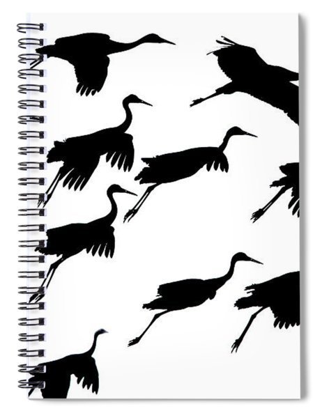 Flying Cranes Against Sky, Socorro, New Spiral Notebook