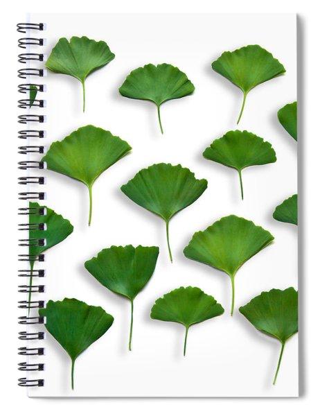 Gingkos Spring Spiral Notebook