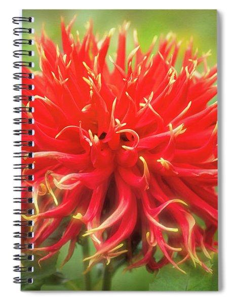 Glorious Sho-n-tell Dahlia Spiral Notebook