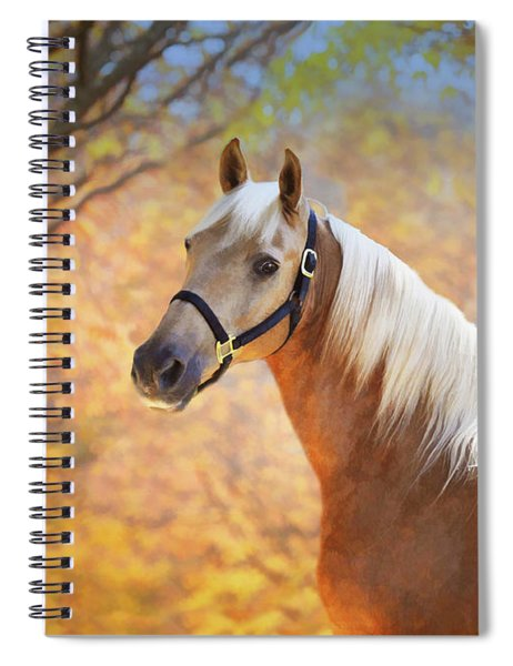 Golden Spirit Spiral Notebook