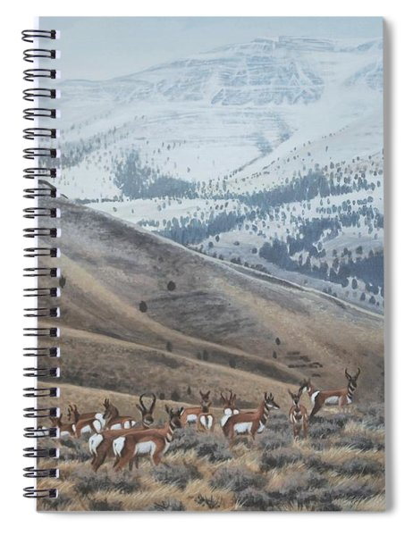 High Country Pronghorn Spiral Notebook