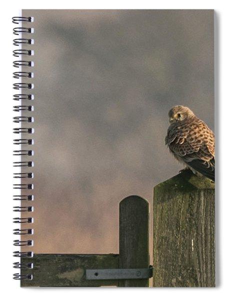 Kestrel Spiral Notebook