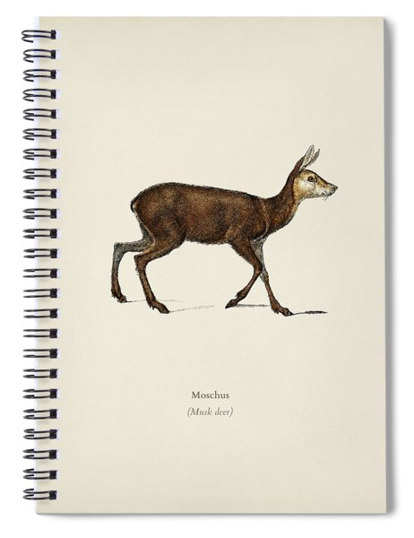 Moschus Illustrated By Charles Dessalines D  Orbigny  1806 1876  Spiral Notebook