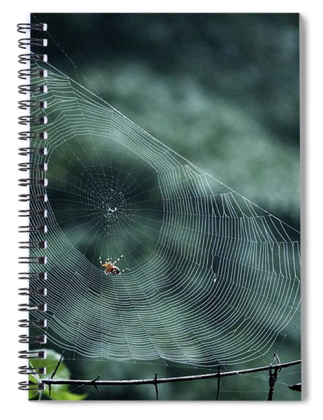 My Web Spiral Notebook