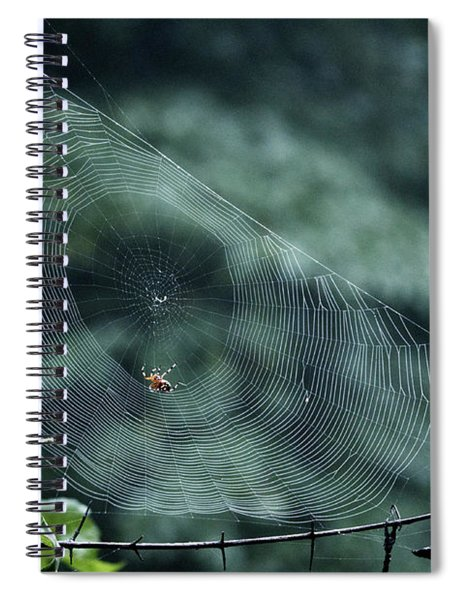 My Web Spiral Notebook