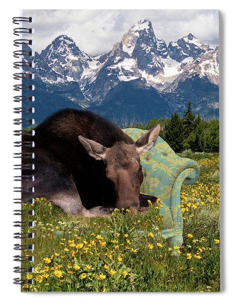 Nap Time In The Tetons Spiral Notebook