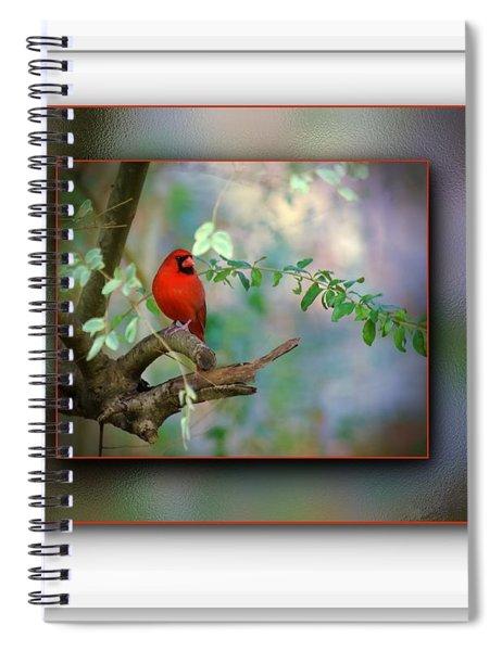 Northern Cardinal Spiral Notebook by Robert L Jackson