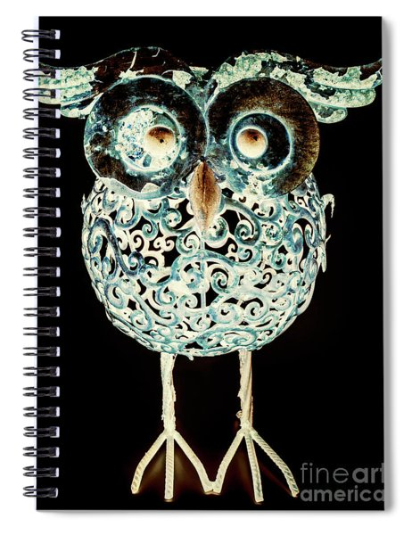 Ornamental Ornithology Spiral Notebook