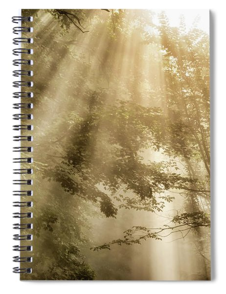 Rays Of Light In Forest Spiral Notebook