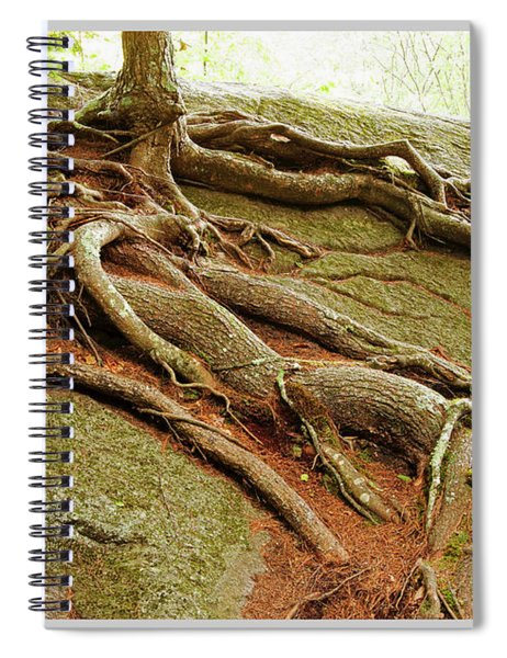 Roots On Rock Spiral Notebook