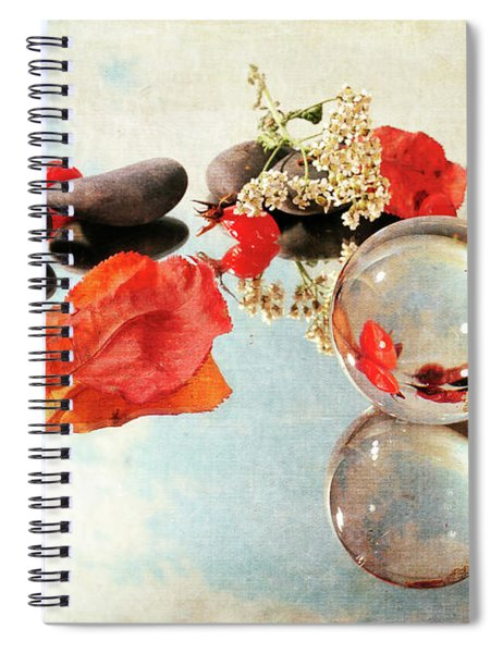 Seasons In A Bubble Spiral Notebook