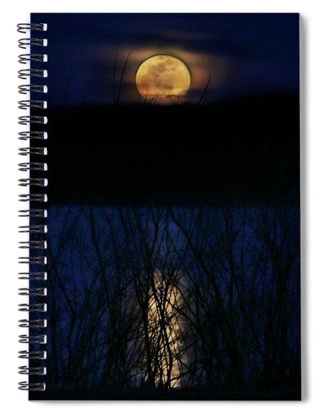 Snow Moon Spiral Notebook