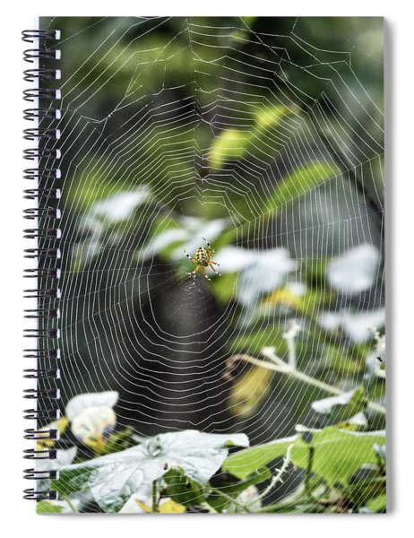Spider At Work Spiral Notebook