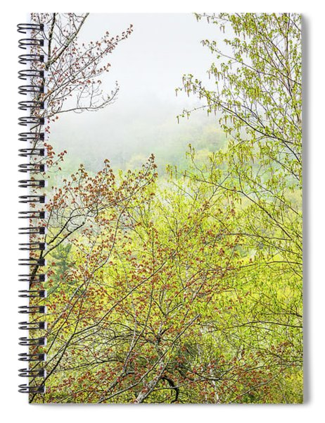 Spring Trees In Acadia Spiral Notebook