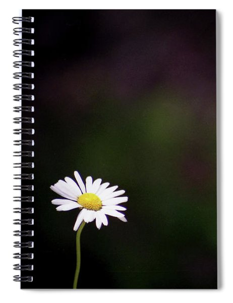 Standing Out Of The Mauve Spiral Notebook