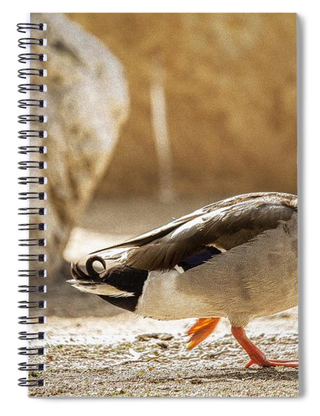 Strut Spiral Notebook
