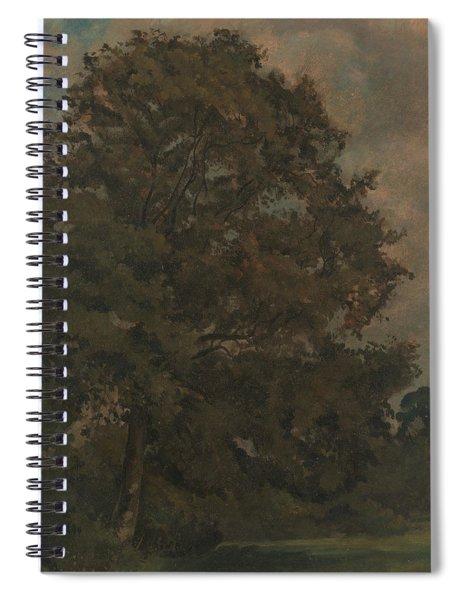 Study Of An Ash Tree Spiral Notebook