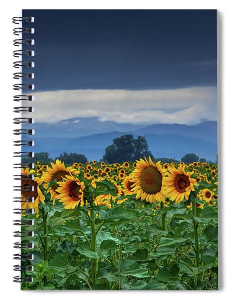 Sunflowers Under A Stormy Sky Spiral Notebook by John De Bord