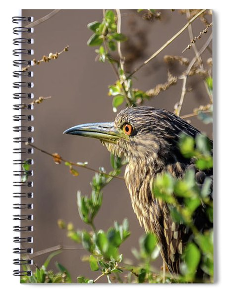 Spiral Notebook featuring the photograph The Look 03 by Arik Baltinester